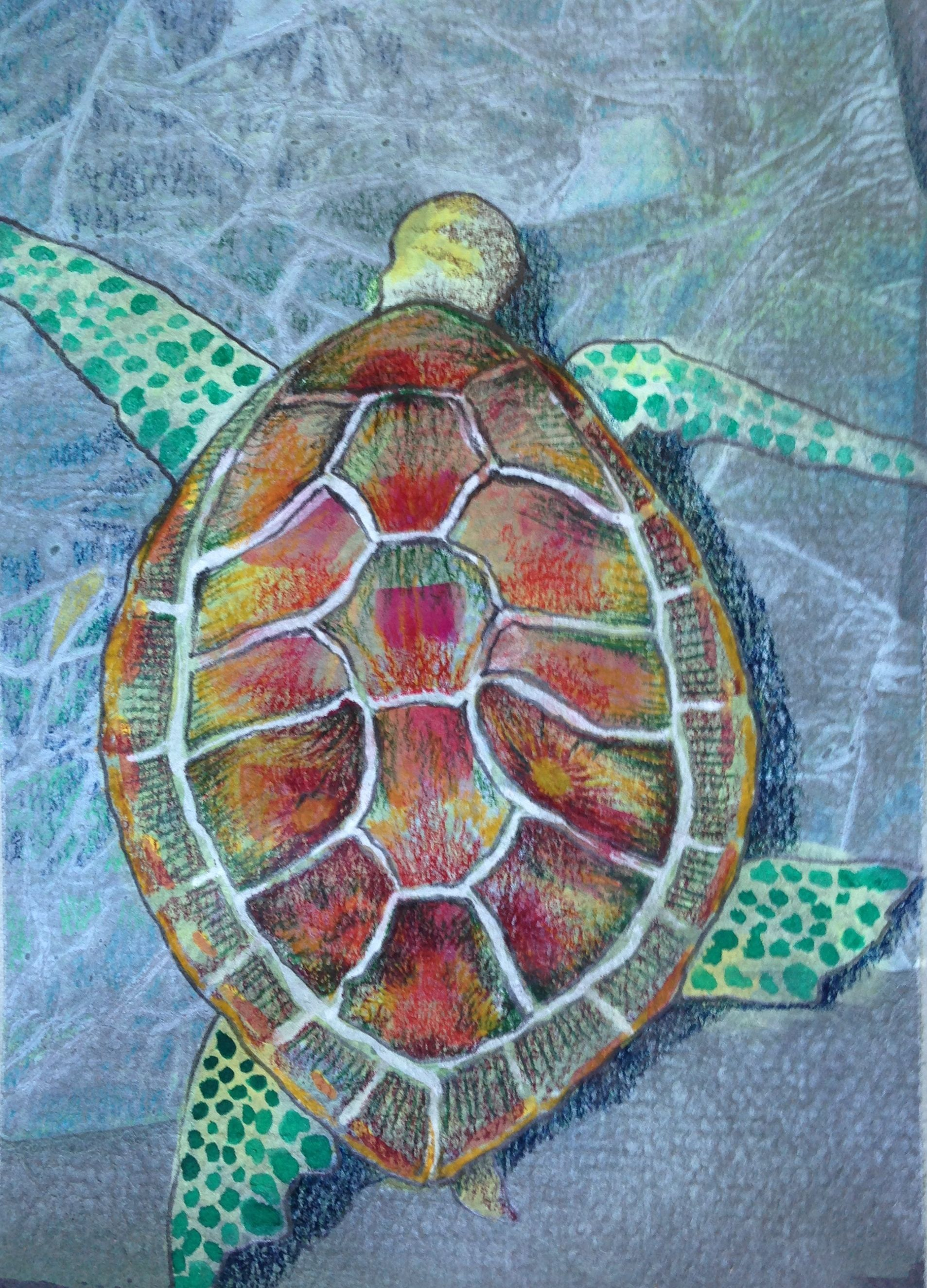 Sea turtle art projects for Painting craft projects