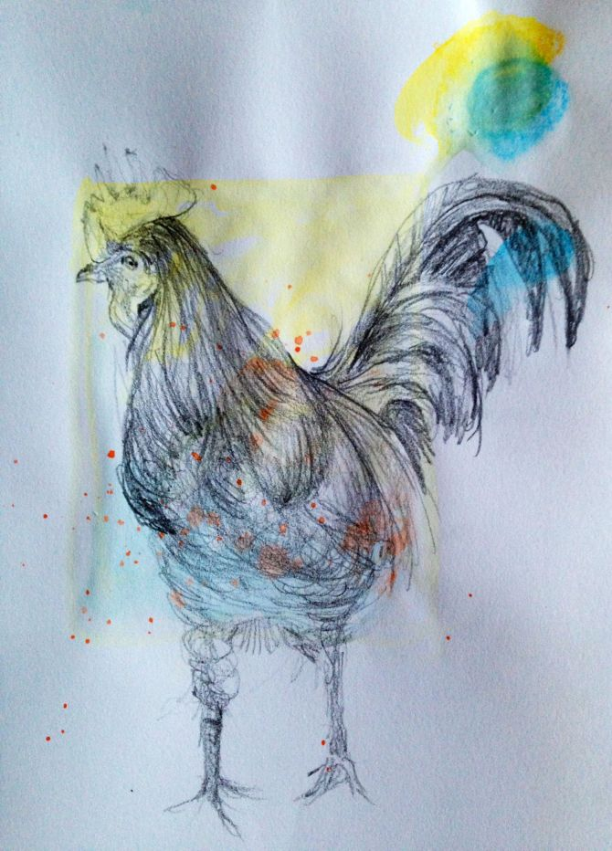 Rooster warm-up