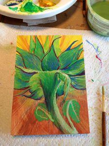 sunflowerbkcasein