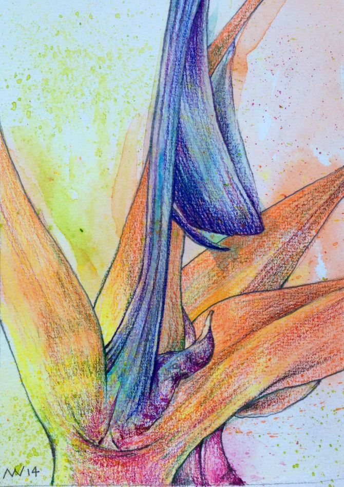 Water-soluble crayon & colored pencil