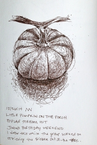 ink sketch of little pumpkin on the porch