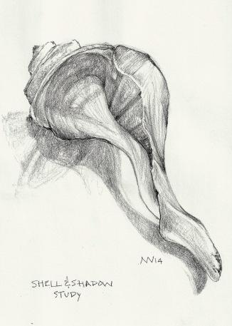 shell study: graphite