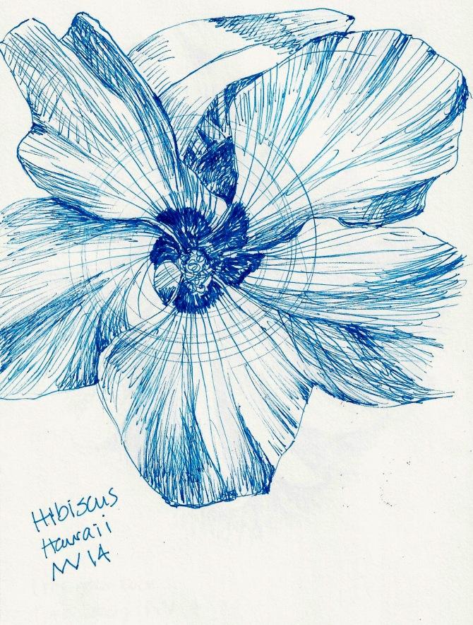 Hibiscus: blue micron ink pen