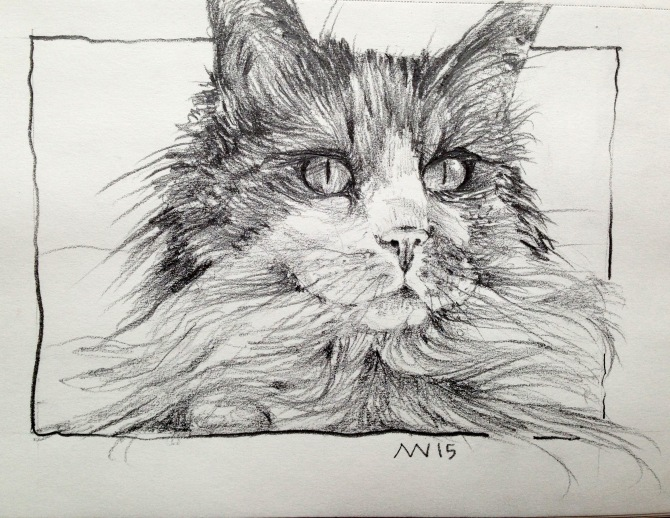Cat from Castine: graphite