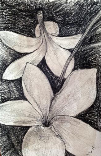 black prismacolor drawn in moleskin sketchbook