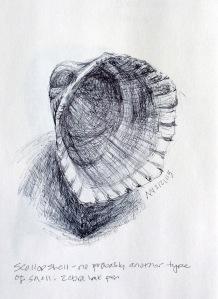 Zebra ballpoint pen drawing