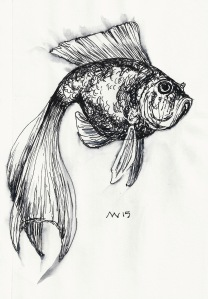 Goldfish black ink only. Quick sketch.