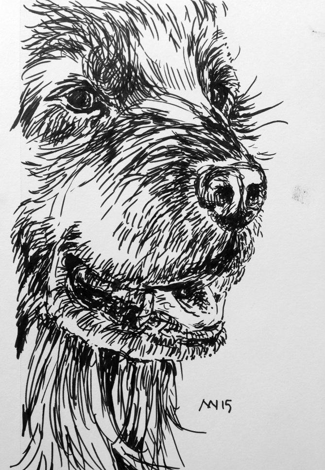 Pitt Pen, brush style tip