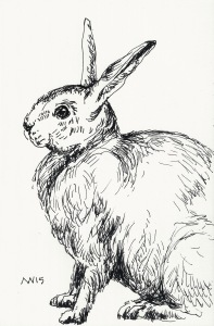 quick Easter bunny sketch: ink only journal