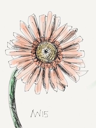 Gerber Daisy: drawn with the pen tool in the iPad app Paper 53