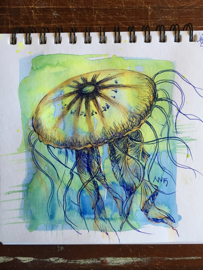 Jellyfish: watercolor and fountain pen